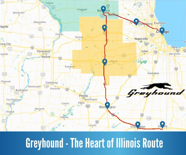 Greyhound Heart of Illinois
